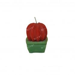 Niral Angel Soap Making Mold